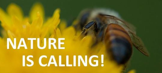 Nature is Calling banner
