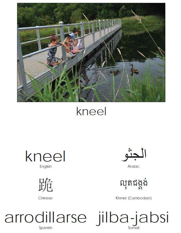 kneel in many languages