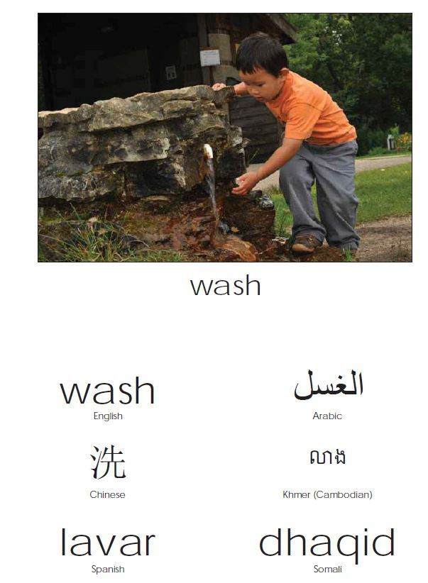 wash in many languages