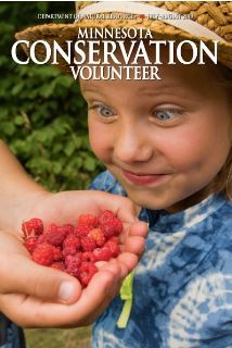 Conservation Volunteer cover child with wild berries