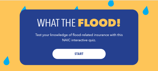 What The FLOOD! quiz site screen shot