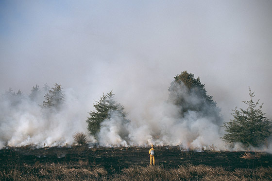 Firefighter in front of prescribed burn in a small forest.