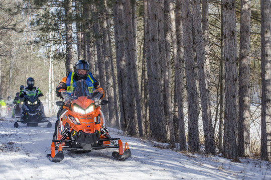 snowmobiles in woods