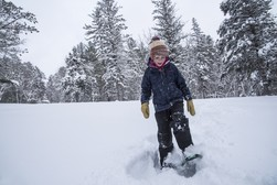 Child snowshoeing in forest