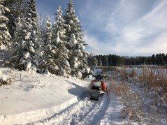 Snowmobile parked on snow-covered trail, Chippewa National Forest