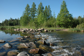 Lake Itasca - headwaters of the Mississippi