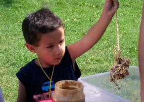 boy holding pine cone bird feeder