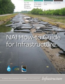 Cover of NAI Infrastructure How-to-Guide
