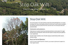 screen shot of stop oak wilt webpage
