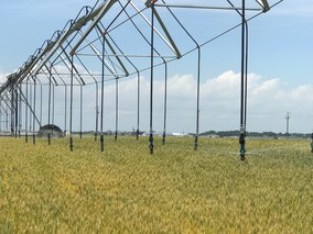 Agricultural irrigation low-flow system