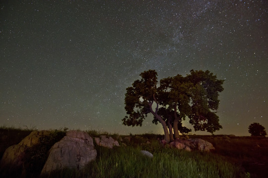 Night stars in the prairie Blue Mounds State Park