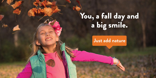You, a fall day and a big smile. Image of a girl smiling and throwing colorful leaves up in the air.