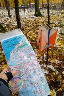Orienteering flag in the fall