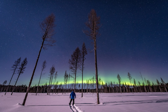 Aurora Borealis with snowshoer in the center