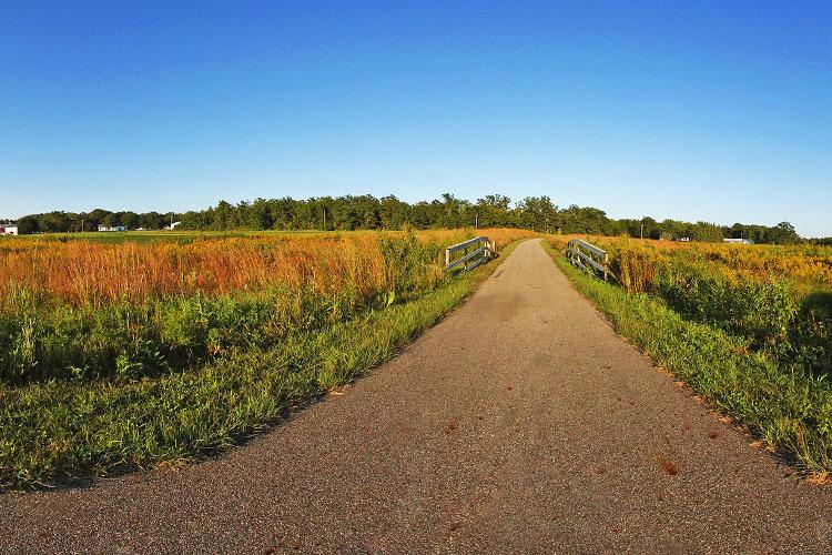 Paved trail through prairie