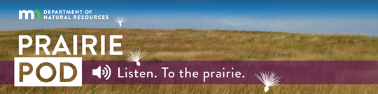 """Text reads """"listen to the prairie, the prairie pod podcast."""" Background image is of a prairie and blue skies."""