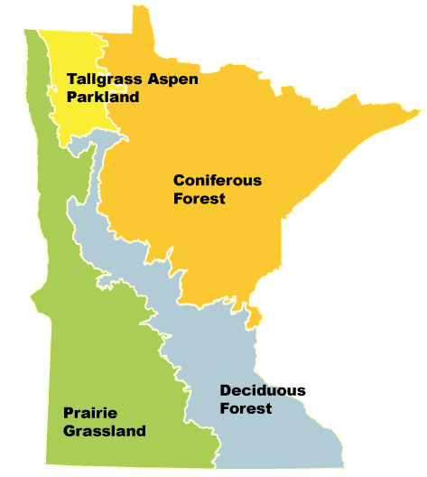 Map of Minnesota with four biomes outlined, Tallgrass Aspen Parkland, Coniferous Forest, Deciduous Forest, Prairie Grassland