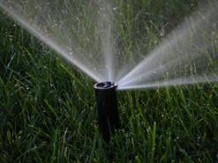 Lawn sprinkler head