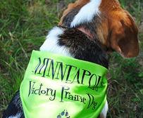 Victory dog park