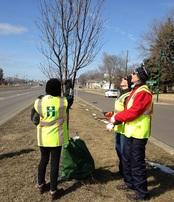 Tree steward volunteers