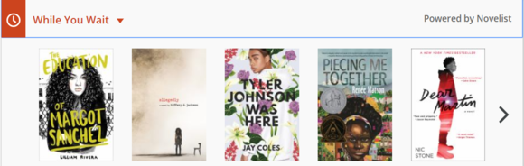 Suggested titles similar to The Hate U Give