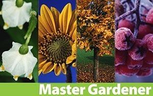 Master Gardener