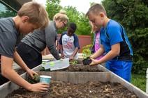 School compost event