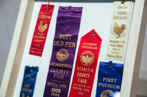 Historical county fair ribbons