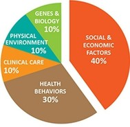 Pie chart that shows things that affect health; biggest piece is social and economic factors