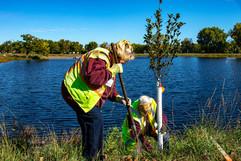 Two volunteers plant trees at Doris A. Kemp Park in Champlin