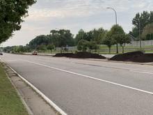 Hiawatha Avenue median bee lawn installation