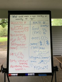 What makes a river healthy or unhealthy concept map
