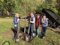 Volunteers planting a tree in Medicine Lake