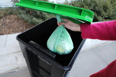 Compostable bag of organic waste being placed into Edina organics recycling cart