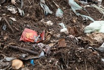 Contamination in the organics recycling