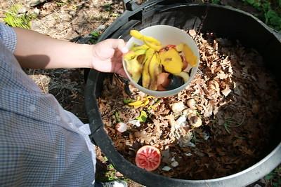Placing food into a backyard composting bin