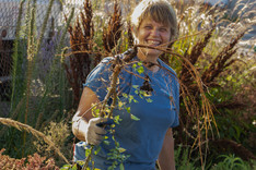 Woman prepping garden for winter