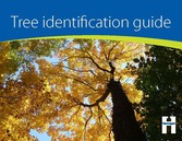 Cover of the tree identification guide