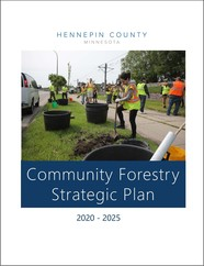 Cover of the community forestry strategic plan