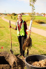 Woman holding shovel and tree ready to be planted