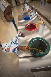 Girl dumping waste from tray into sorting station bin in school cafeteria