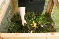 Woman's hand adding veggie scraps to compost bin