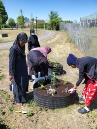 Group of youth working on raised planting beds