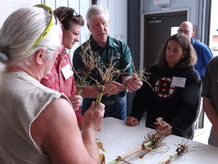 Teacher tour participants look at corn roots