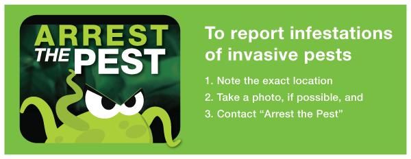 Arrest the Pest logo