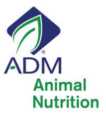 Image result for ADm Rough-n-ready 14BT