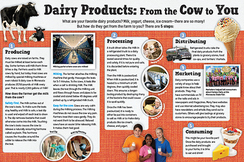 Dairy Farm-to-Table Poster