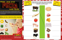 Where Does your Pizza Come From? Poster