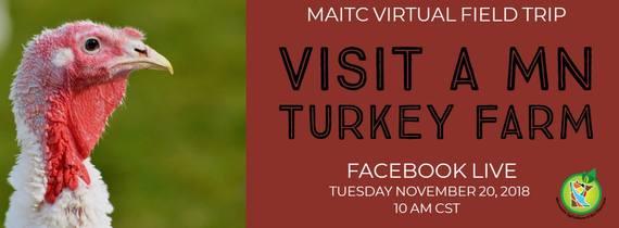 Turkey Virtual Field Trip