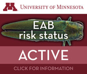 Emerald ash borer active risk status image from the University of Minnesota